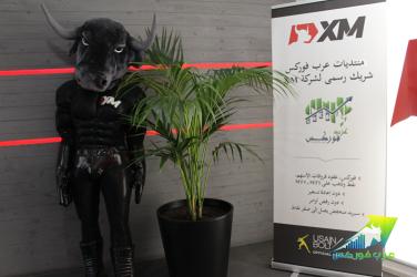 arabfx-xm1.png